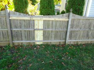 Advice On Common Fence Repairs